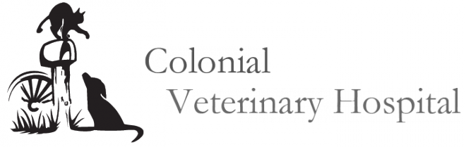 Colonial Veterinary Hospital